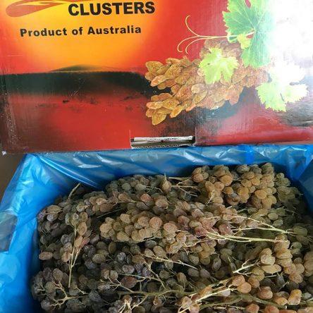 Nho Khô Nguyên Cành CLUSTERS Úc Thùng 5kg